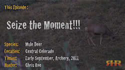 2011 Mule Deer Hunt - Seize the Moment