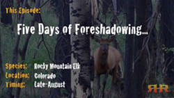 Elk Hunting - Five Days of Foreshadowing